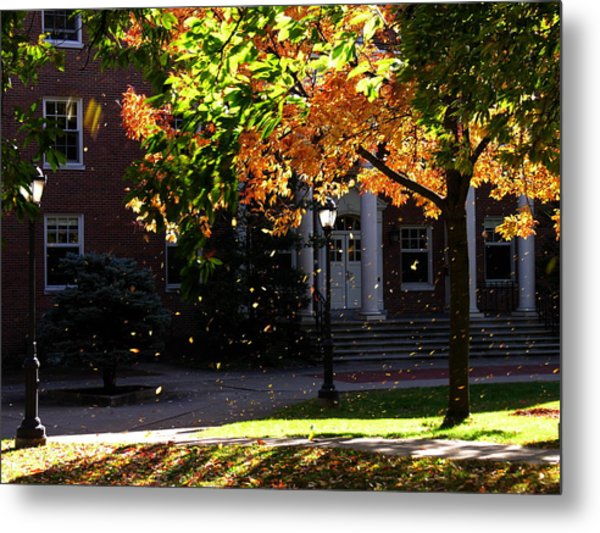 Lafayette College Easton Pa In Autumn Metal Print by Jacqueline M Lewis