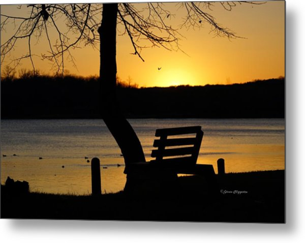 Lake Carlos State Park Sunset Metal Print