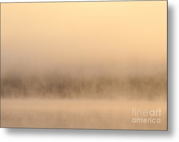 Lake Cassidy With Fog And Trees Along Shoreline Shrouded In Fog Metal Print