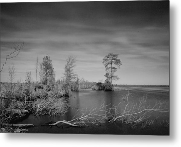 Lake Drummond Metal Print