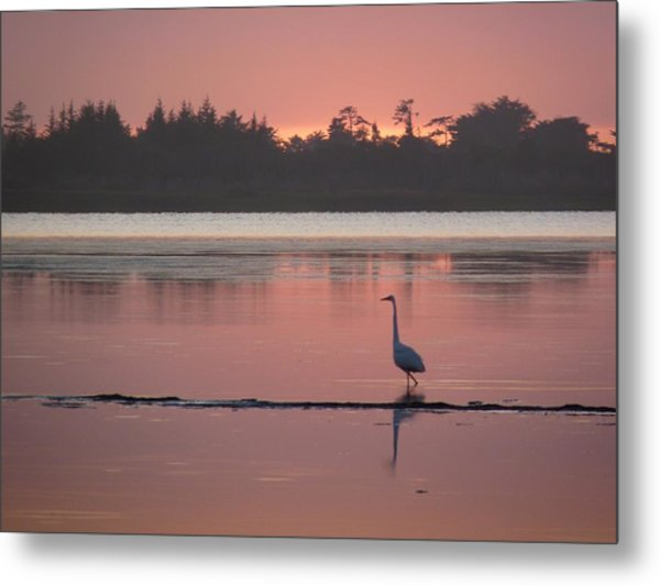 Lake Earl Sunset  Metal Print