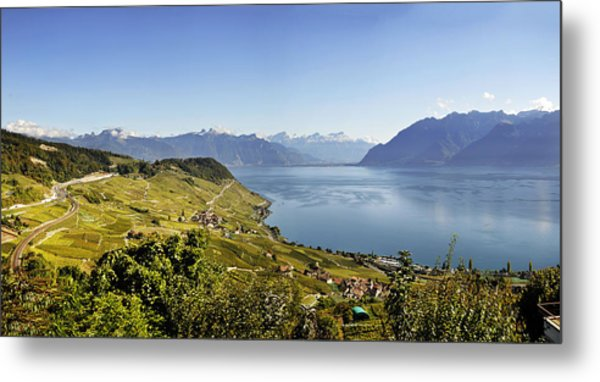 Lake Geneva Vineyards Metal Print