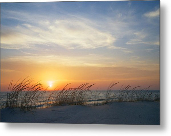 Metal Print featuring the photograph Lake Michigan Sunset With Dune Grass by Mary Lee Dereske