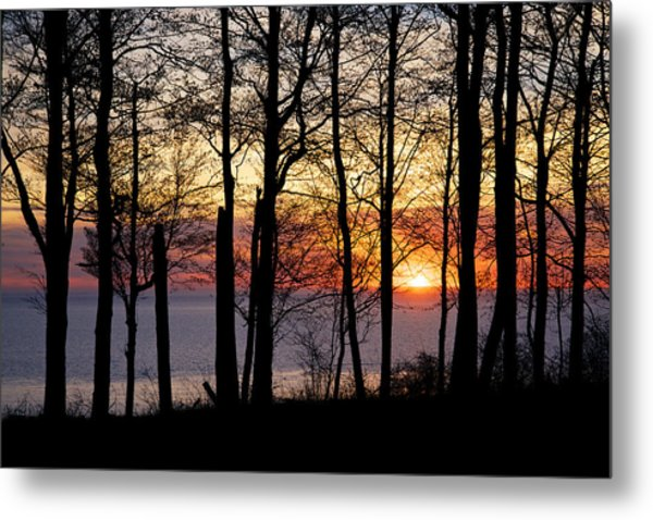 Metal Print featuring the photograph Lake Michigan Sunset With Silhouetted Trees by Mary Lee Dereske