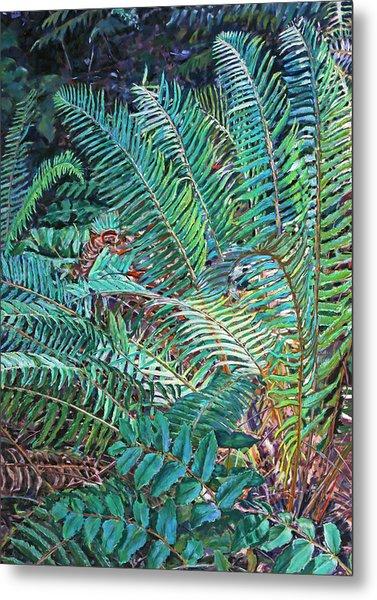Lake Padden Series - Wendel Holboy Bench Metal Print