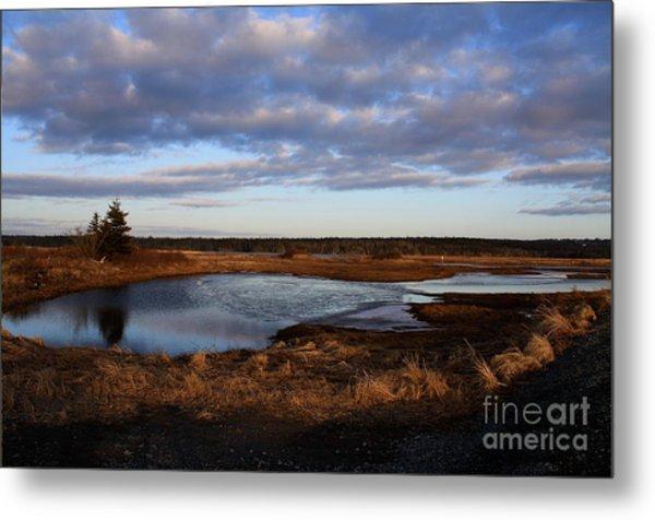 Lake Reflection Metal Print by Sandy MacNeil