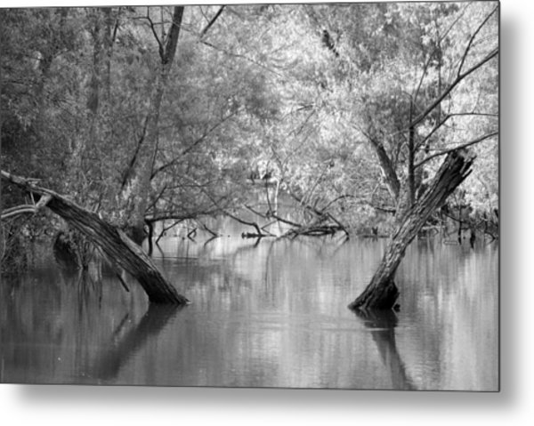 Lake Reflections Metal Print by Misty Stach