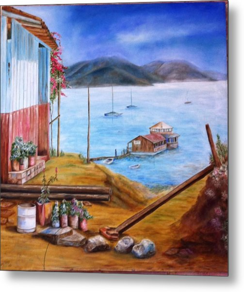 Lake Valle De Bravo Mexico Metal Print by Nora Vega