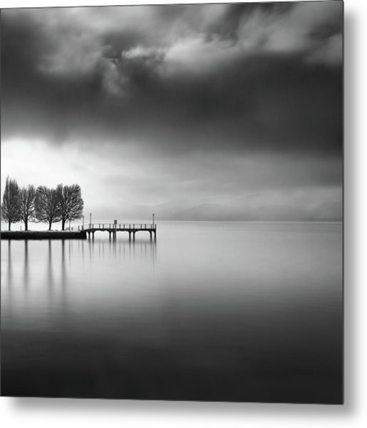 Lake View With Trees Metal Print