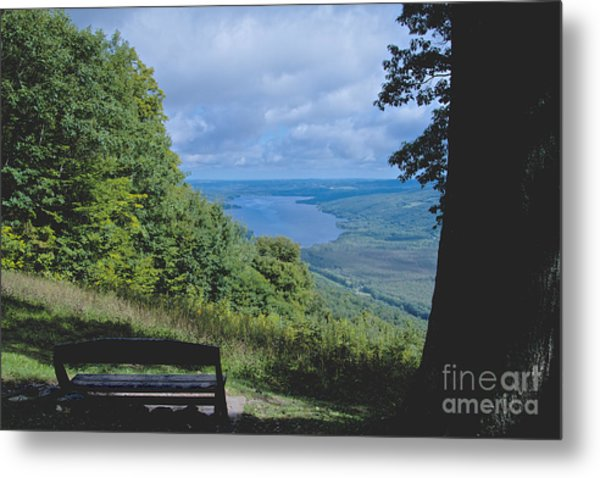 Lake Vista Metal Print