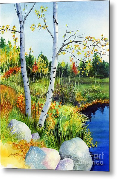 Lakeside Birches Metal Print