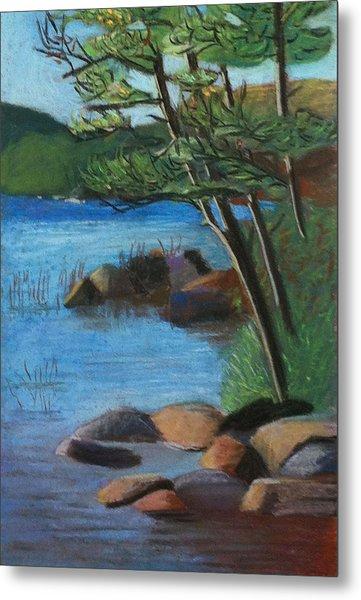 Lakeside Pines Metal Print by Jane Croteau