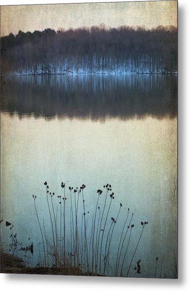 Lakeside Winter Flowers Metal Print
