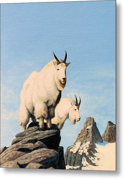 Lamoille Goats Metal Print
