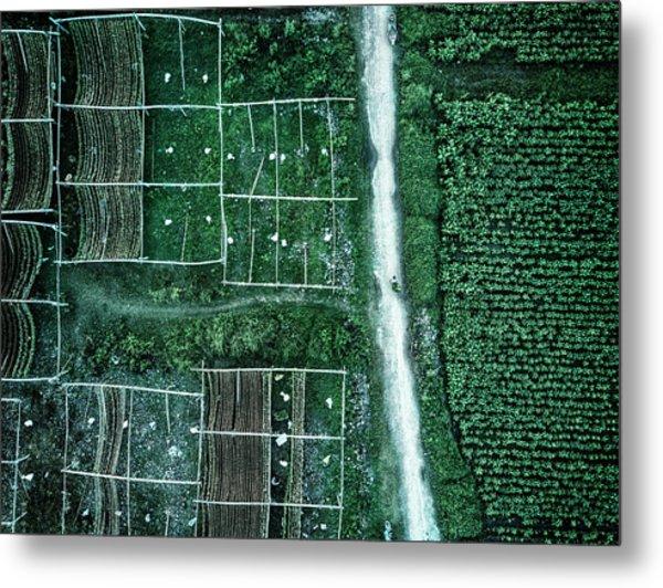 Land Of Idyllic Beauty Metal Print by Zhou Chengzhou