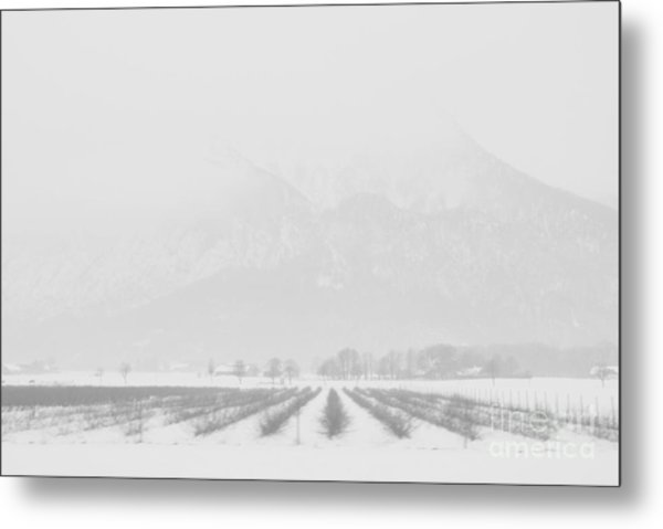 Land Of Snow Metal Print