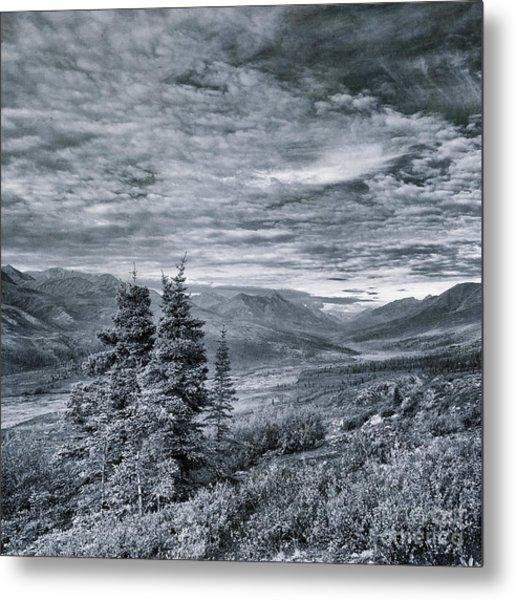 Land Shapes 18 Metal Print