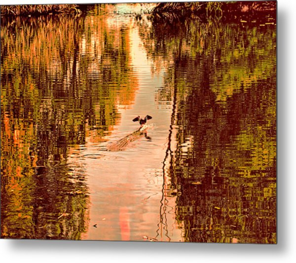 Metal Print featuring the photograph Landing Duck Absrtact by Leif Sohlman