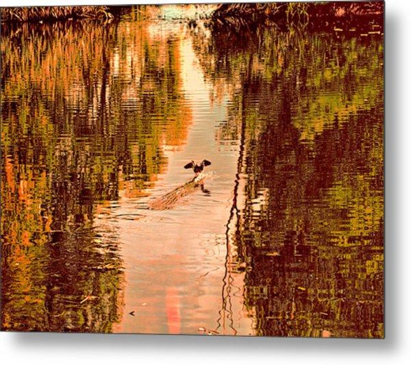 Landing Duck Absrtact Metal Print