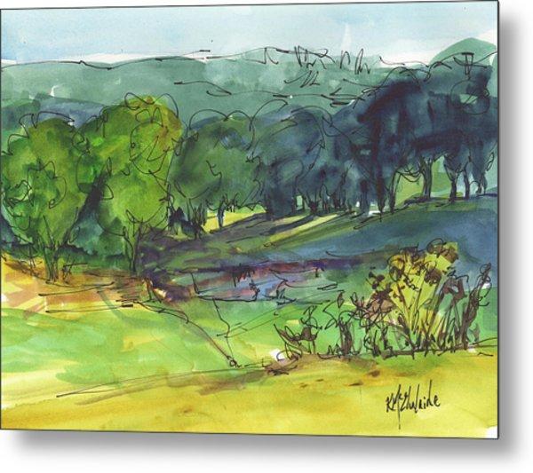 Landscape Lakeway Texas Watercolor Painting By Kmcelwaine Metal Print
