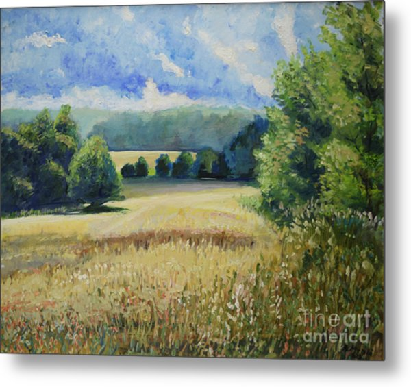 Landscape Near Russian Border Metal Print