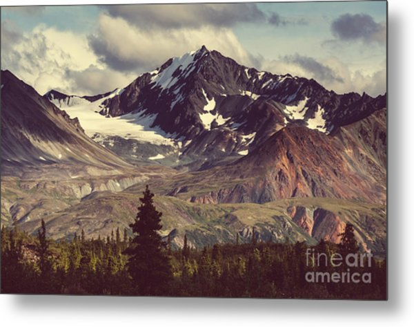 Landscapes On Denali Highway.alaska Metal Print