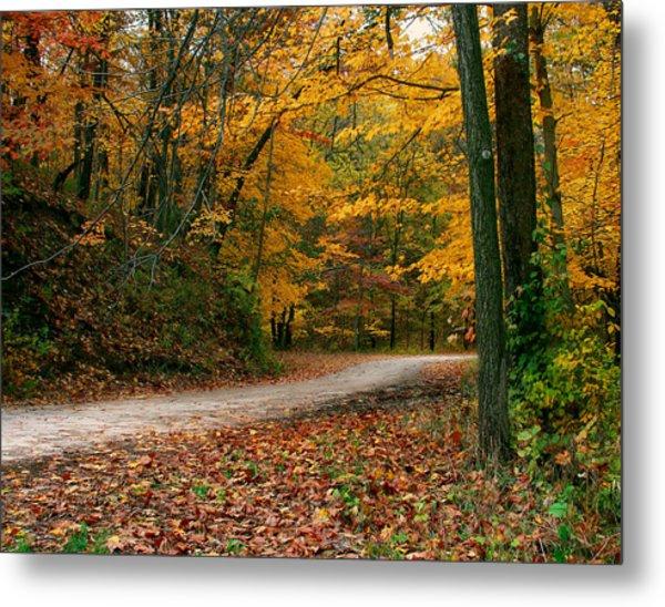 Lane In Fall Metal Print