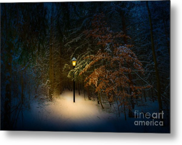 Lantern In The Wood Metal Print