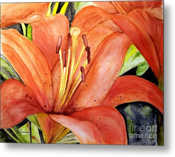 Large Orange Lily Metal Print