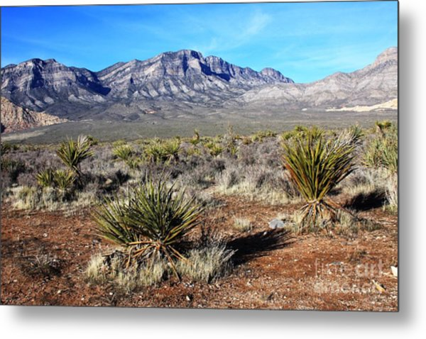 Las Vegas Desert Metal Print by Kathlene Pizzoferrato