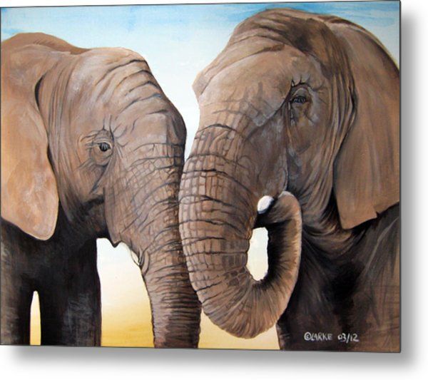 Latabe And Five Metal Print by Stacey Clarke