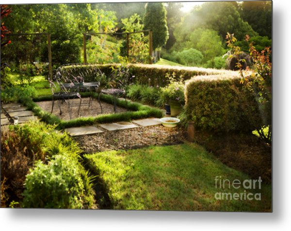 Late Afternoon Garden Metal Print
