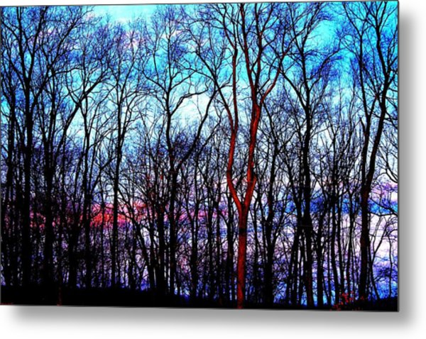 Late Cold Afternoon Metal Print by Jose Lopez