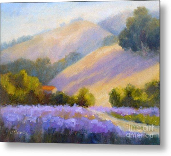 Late June Hills And Lavender Metal Print