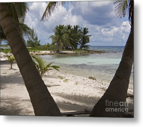 Laughing Bird Caye Metal Print