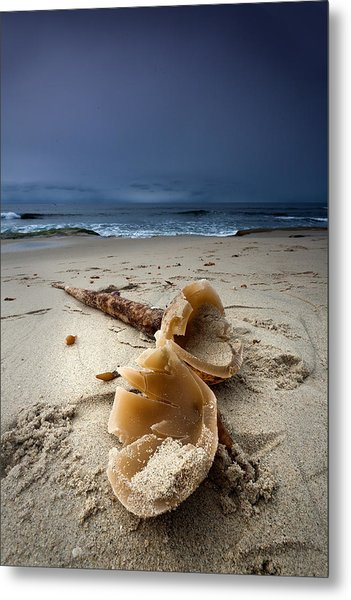 Laughing With A Mouth Full Of Sand Metal Print by Peter Tellone