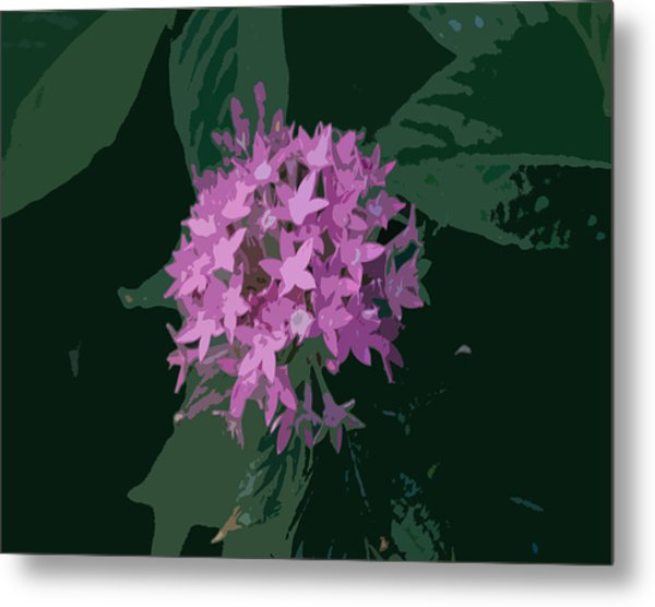 Lavender And Green Pla 369 Metal Print