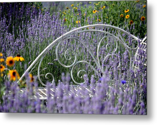Lavender With Scrolled Settee Metal Print