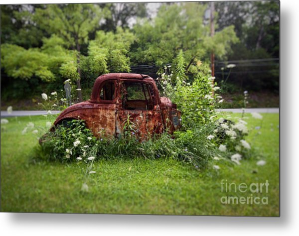 Lawn Ornament Metal Print