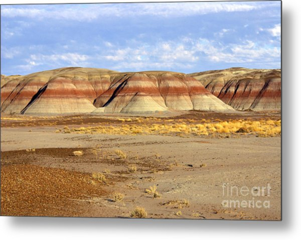 Layers And Landform - The Painted Desert Metal Print by Douglas Taylor