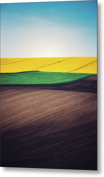 Layers Of Colorful Field Metal Print by Borchee