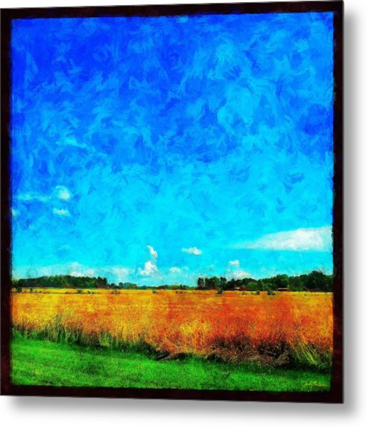 Lazy Clouds In The Summer Sun Metal Print