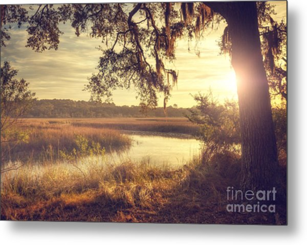 Lazy Morning Metal Print
