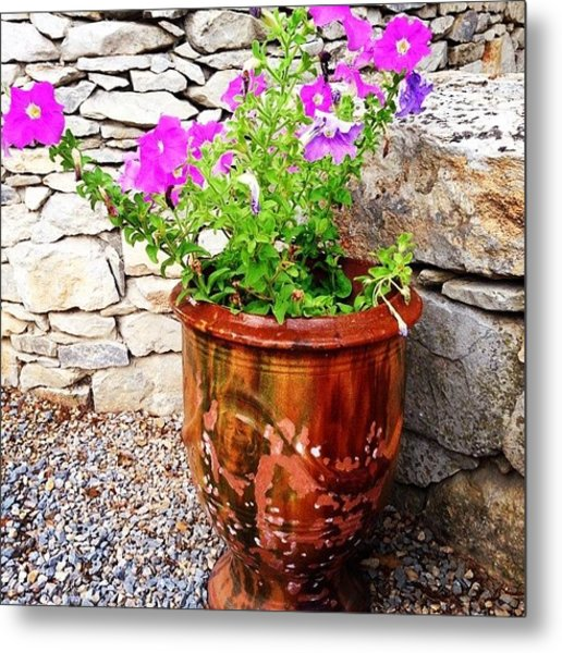 Anduze Flower Pot With Petunias Metal Print