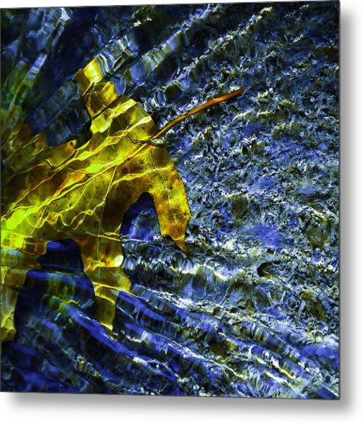Leaf In Creek - Blue Abstract Metal Print