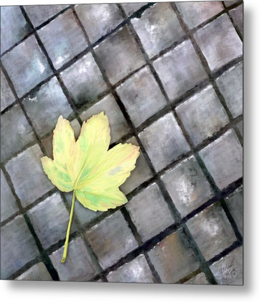 Leaf On Ground Metal Print by Ondrej Kollar