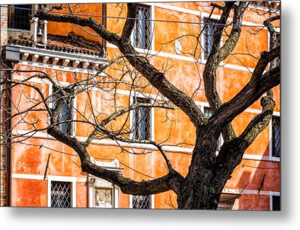 Leafless Tree In Venice Metal Print