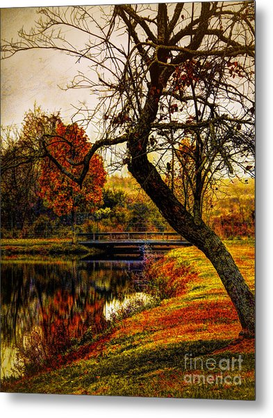 Leaning Toward Fall  Metal Print