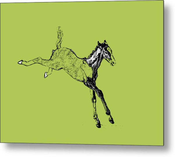 Leaping Foal Greens Metal Print