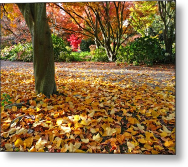 Leaves And More Leaves Metal Print